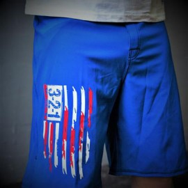 321 APPAREL - Mens Modern Flag Shorts